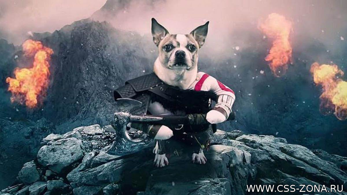 Эпичный прицеп новой Dog of War, новости css